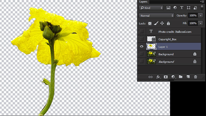removed object from photoshop