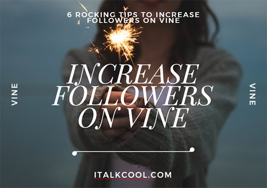 how to get more followers on vine